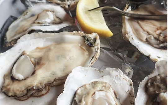 Raw Oysters Sold by DiCarlo Seafood Linked to Outbreak Recalled