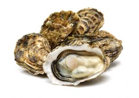 Oysters From Mexico Linked to Multistate Shigella Vibrio Outbreak